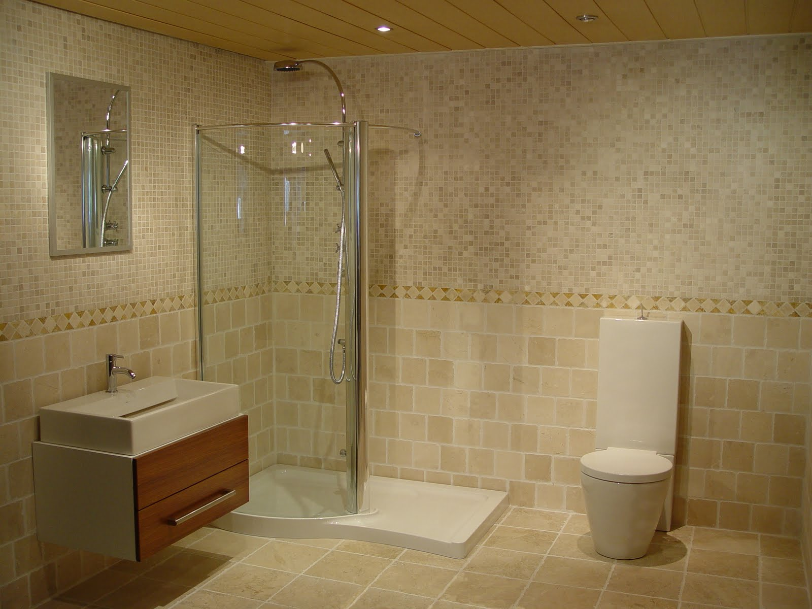 Bathroom designs no tiles