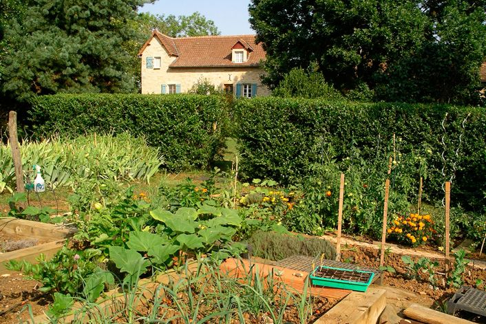 French country kitchen garden