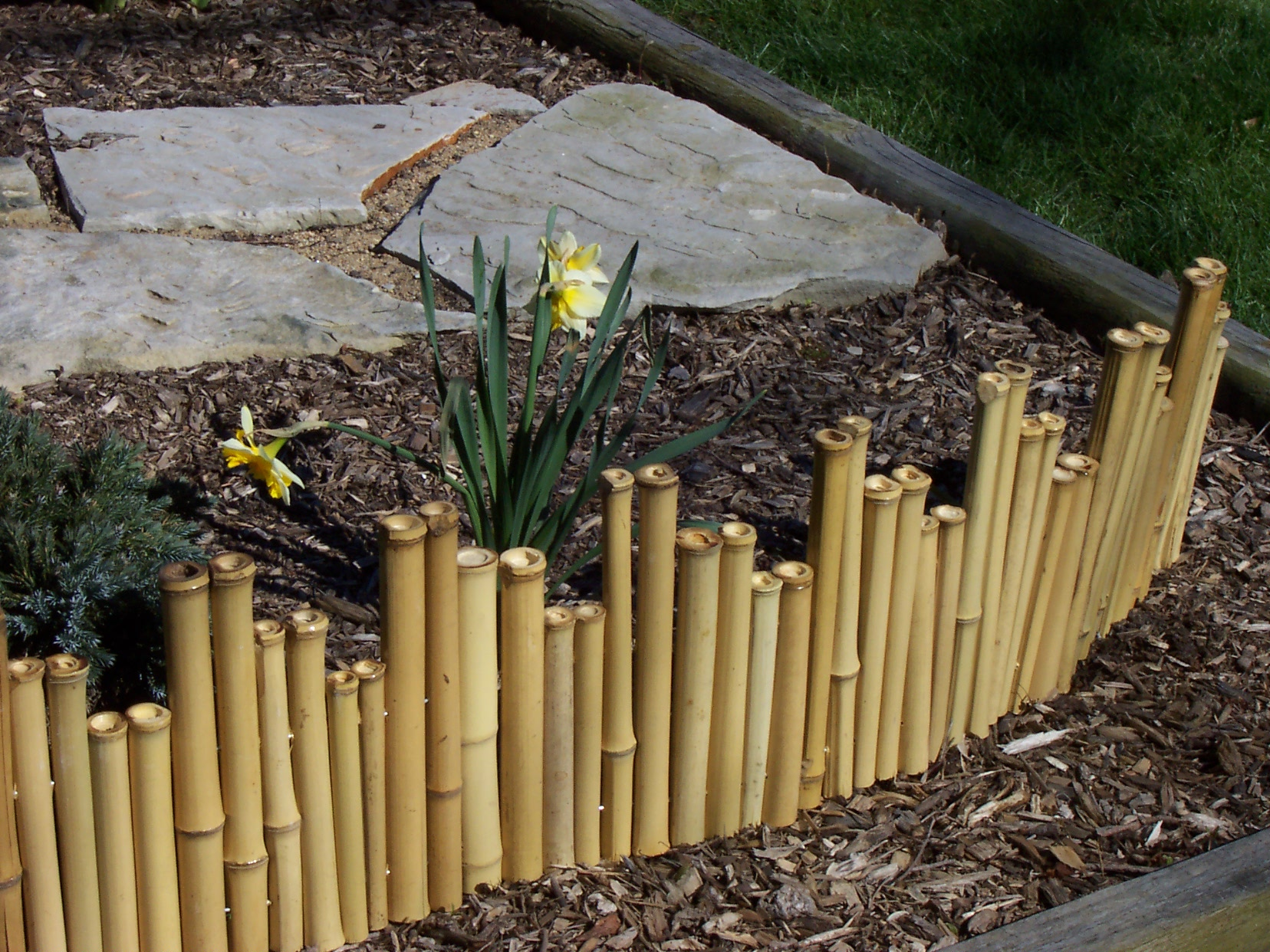 Garden bamboo fencing ideas