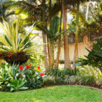 Garden design and ideas tropical