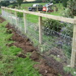 Garden fence ideas for rabbits
