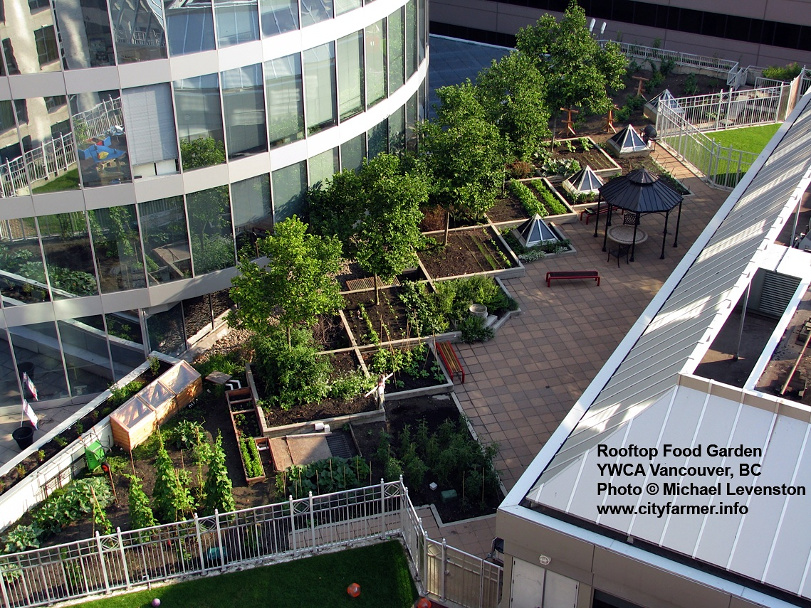 Roof top food garden
