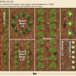 Vegetable garden blueprints