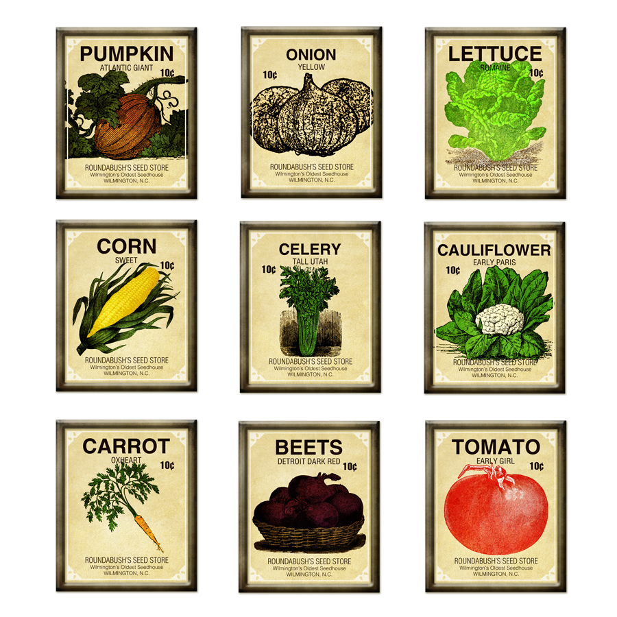 Vegetable garden seeds
