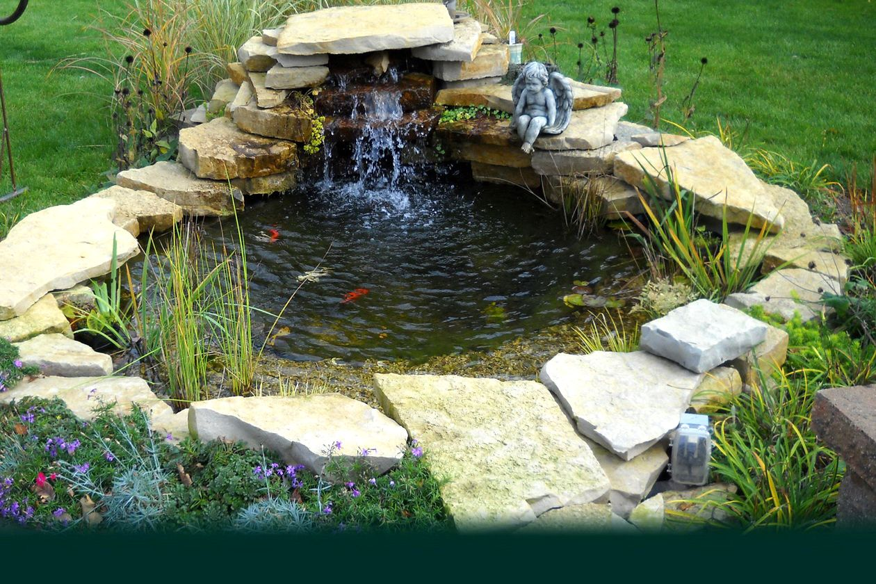 Garden Pond Inspiration photo - 9