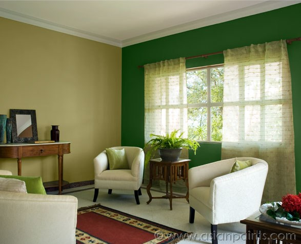 asian paints colour shades for living room photo - 10