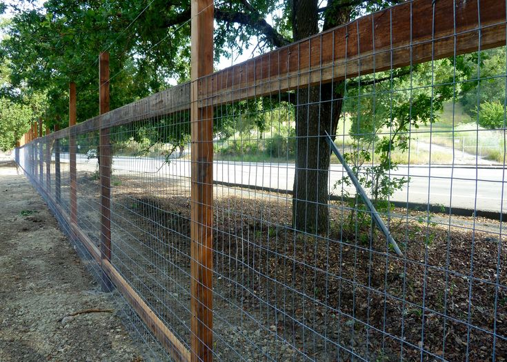deer fencing ideas photo - 10