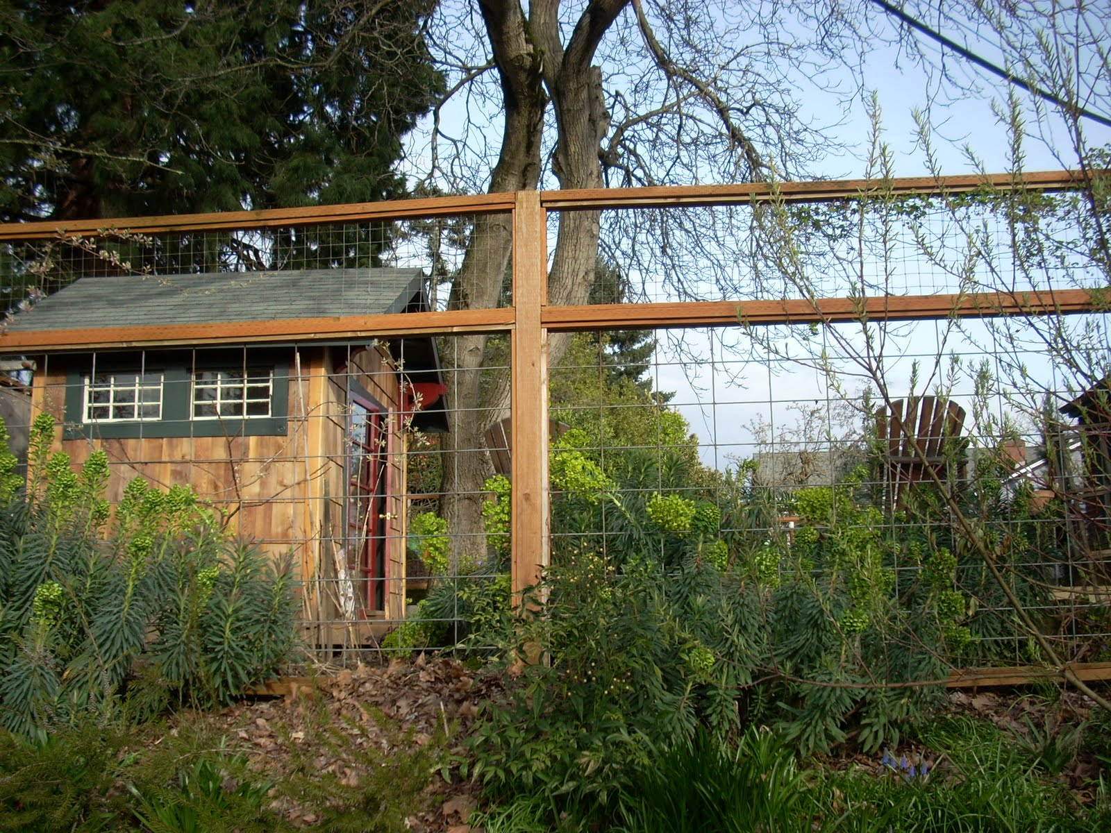 deer fencing ideas photo - 4