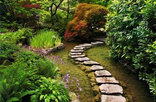 eco garden design ideas photo - 7