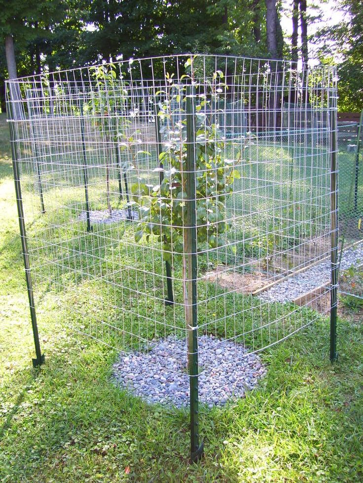 fencing ideas to keep deer out photo - 3