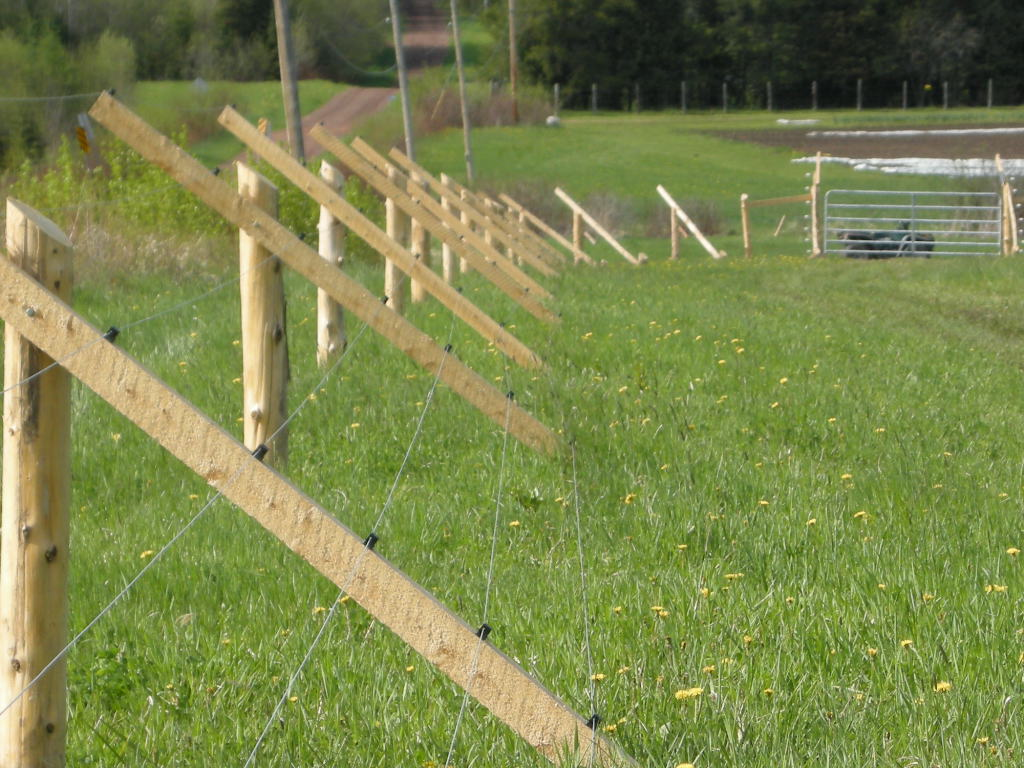 fencing ideas to keep deer out photo - 7