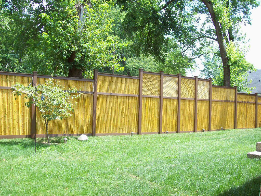 garden bamboo fencing ideas photo - 2