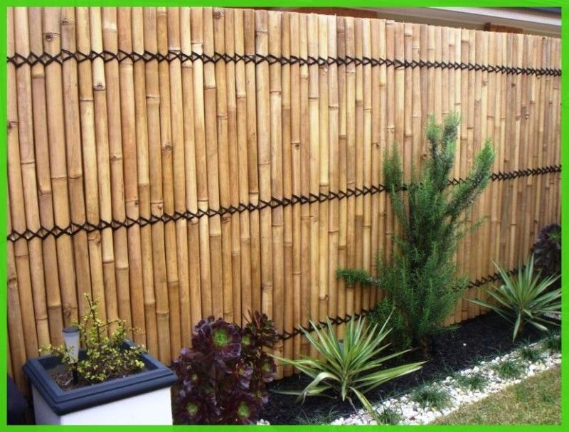 garden bamboo fencing ideas photo - 4