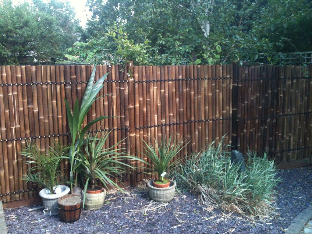 garden bamboo fencing ideas photo - 5