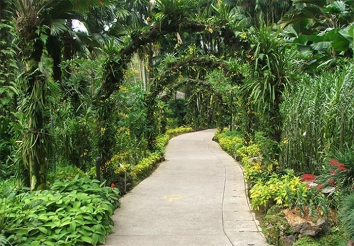 garden design and ideas tropical photo - 2