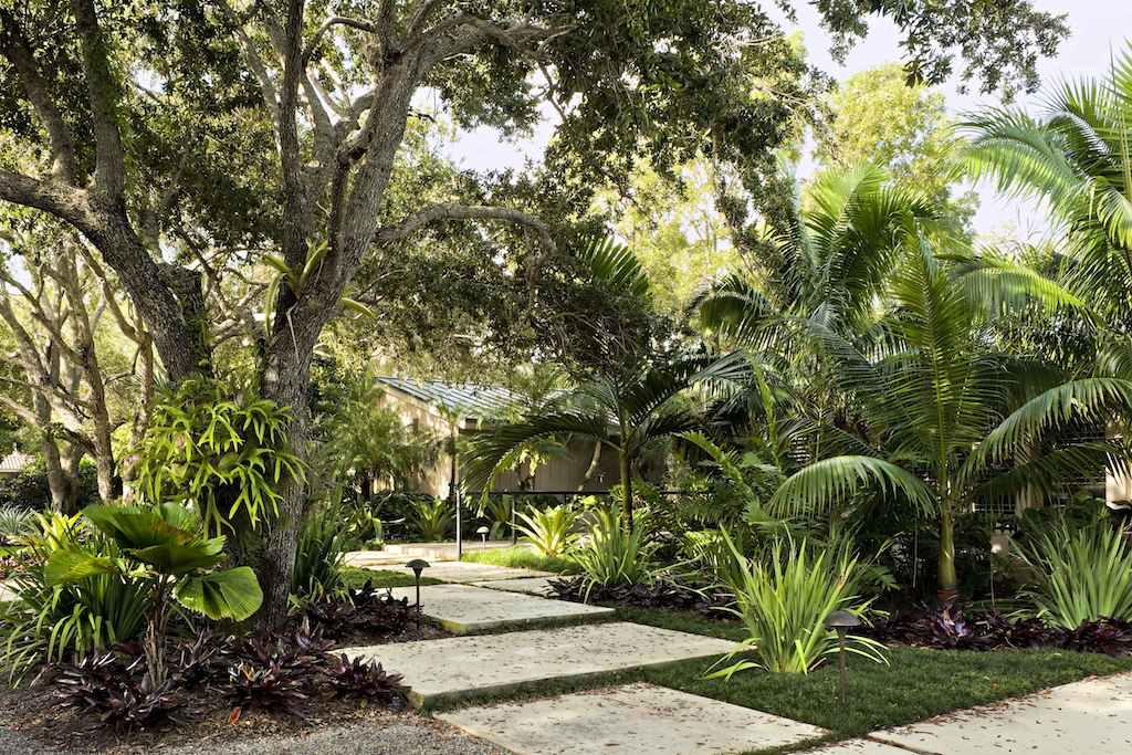 garden design and ideas tropical photo - 6