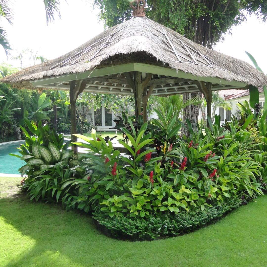 garden design and ideas tropical photo - 7