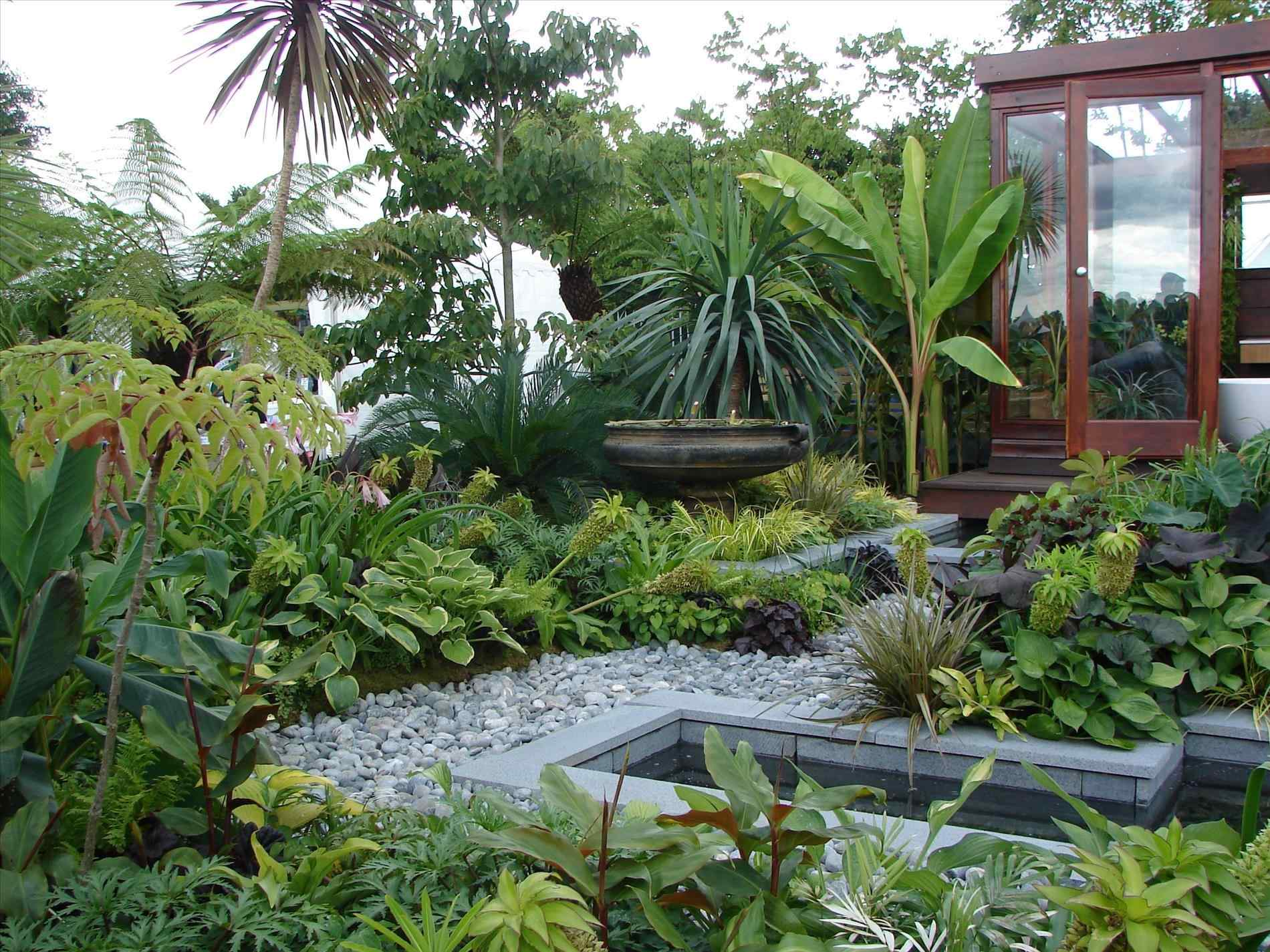 garden design and ideas tropical photo - 9