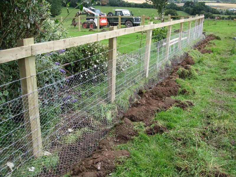 garden fence ideas for rabbits photo - 5