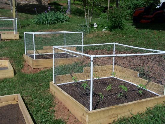 garden fence ideas for rabbits photo - 9