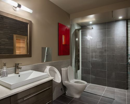 home bathrooms with urinals photo - 6