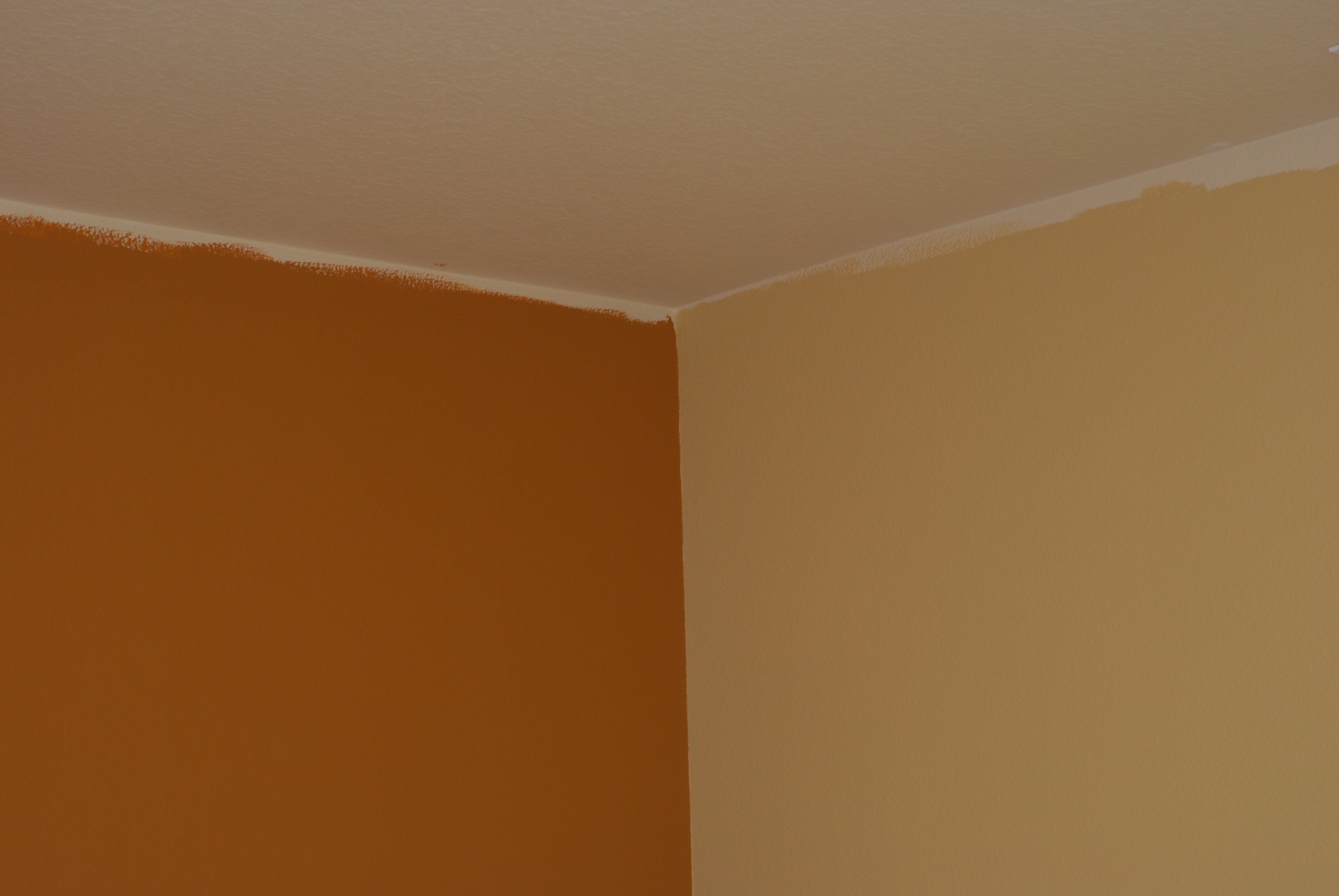 interior house paint samples photo - 8