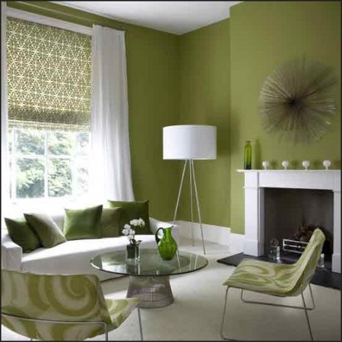 interior wall paint green photo - 7