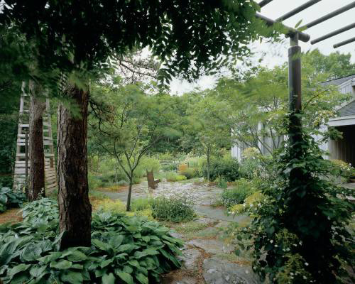 japanese tea garden design ideas photo - 1