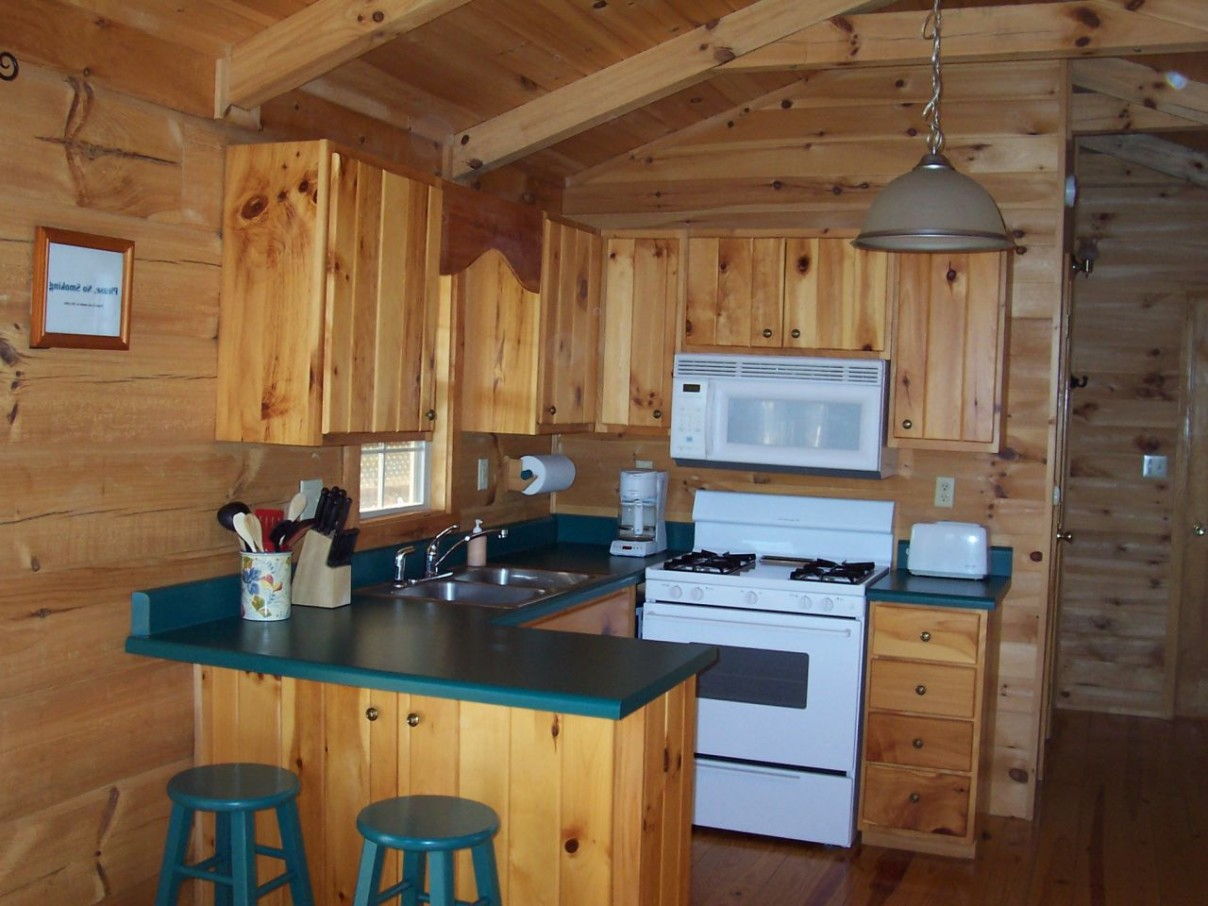 kitchen cabinet ideas for a cabin photo - 4