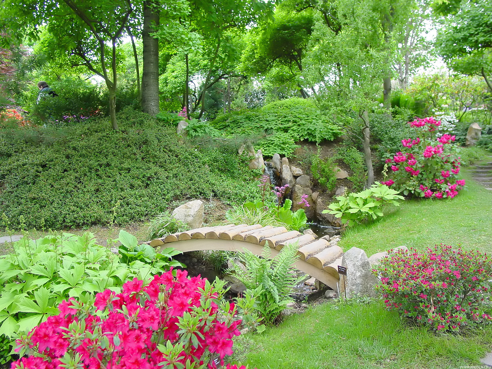 large flower garden design photo - 10