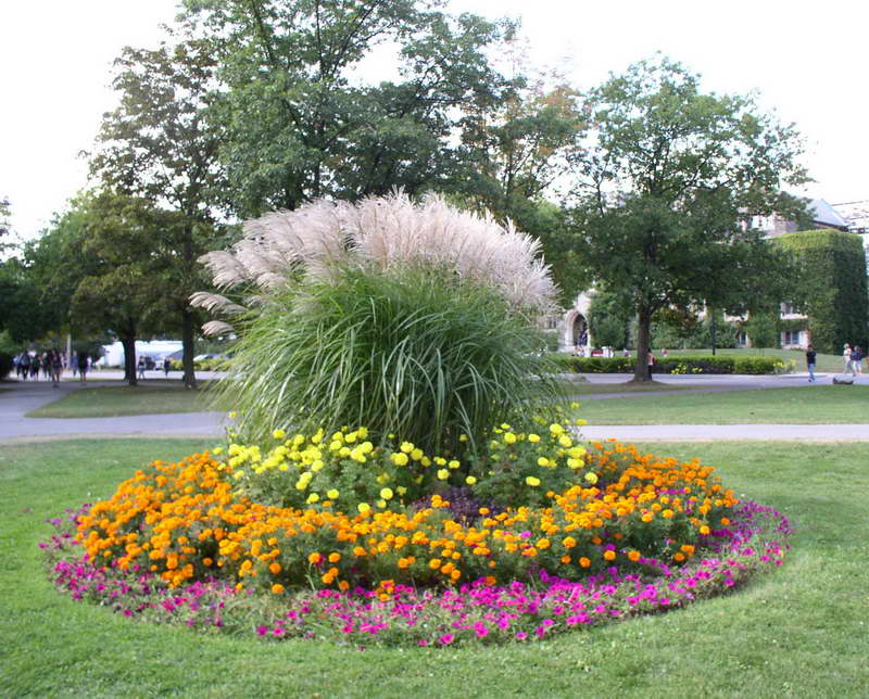 large flower garden design photo - 8
