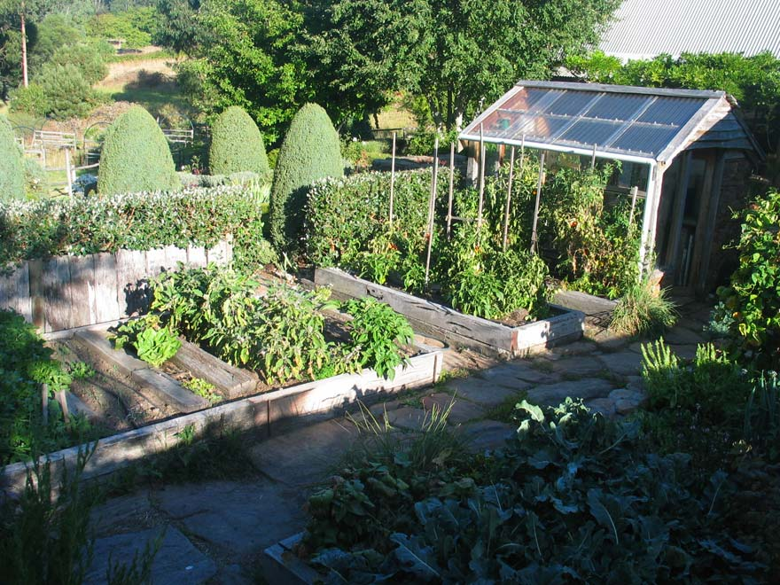 large vegetable garden design photo - 9
