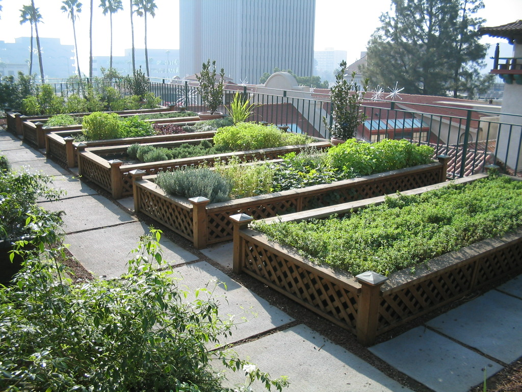 roof top food garden photo - 10