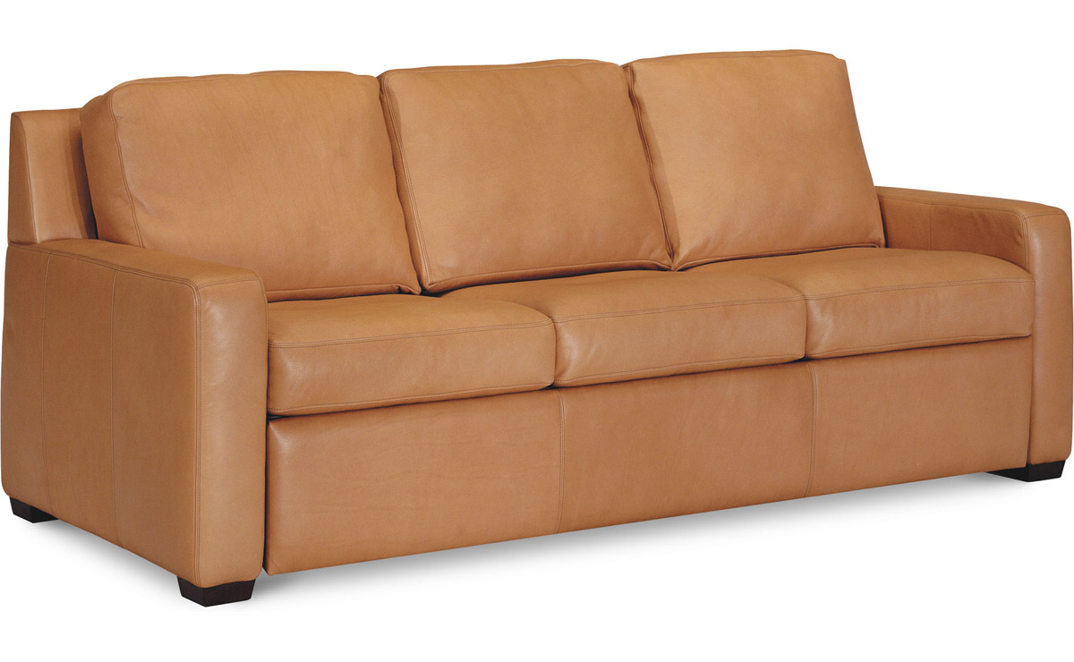 sleeper sofa american leather photo - 7