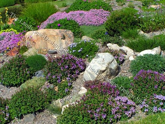 sloped rock garden ideas photo - 6