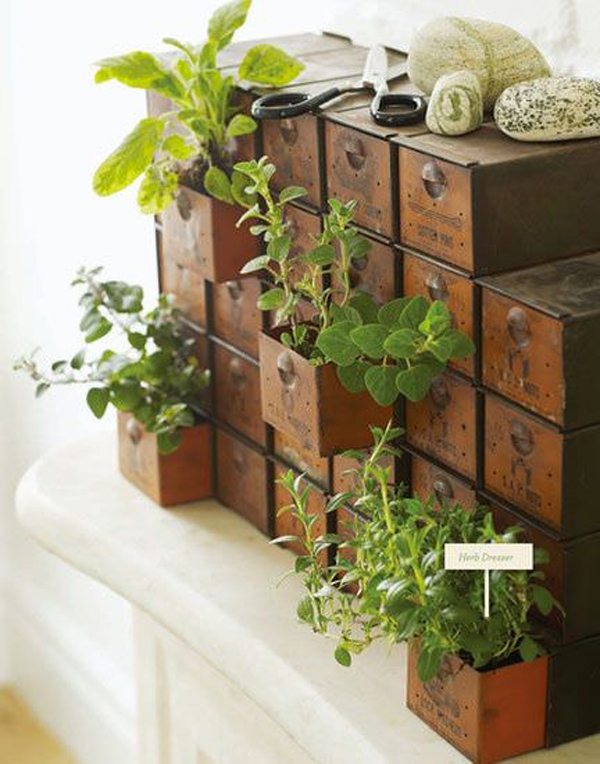 small easy herb garden photo - 7