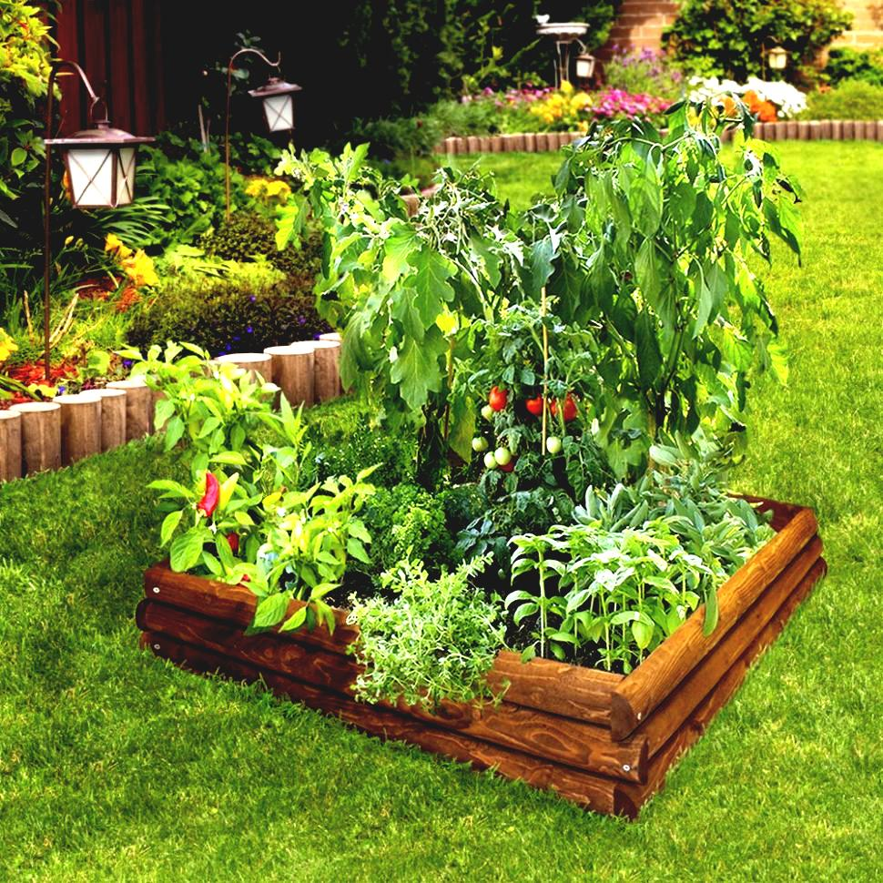 small easy herb garden photo - 8