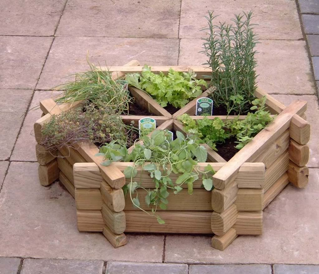 small easy herb garden photo - 9
