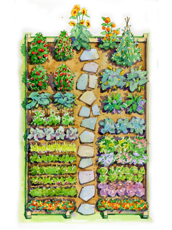 vegetable garden blueprints photo - 8