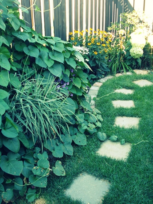 vegetable garden borders photo - 10