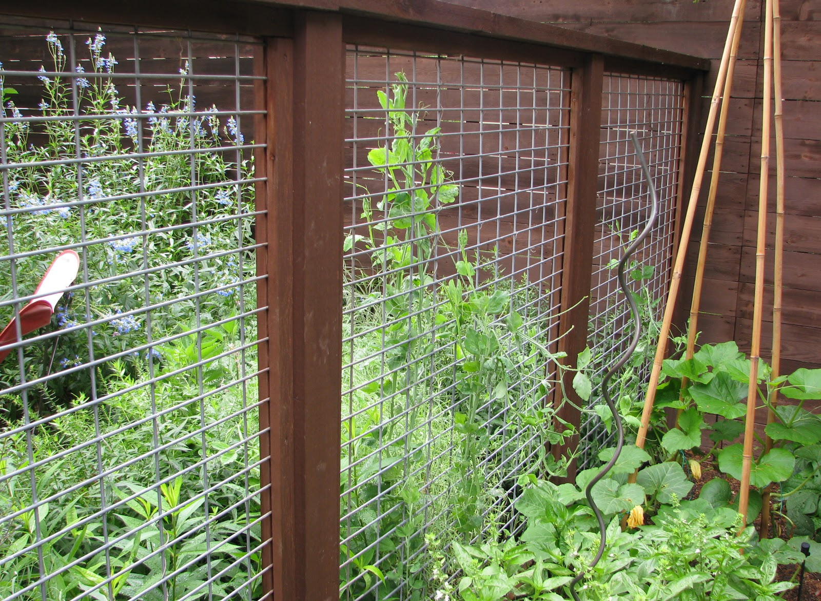 vegetable garden fence panels photo - 2