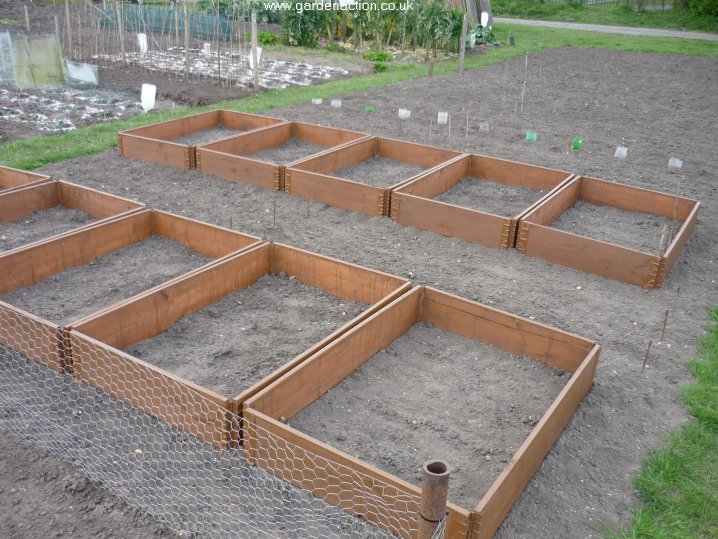 vegetable garden ideas photo - 7