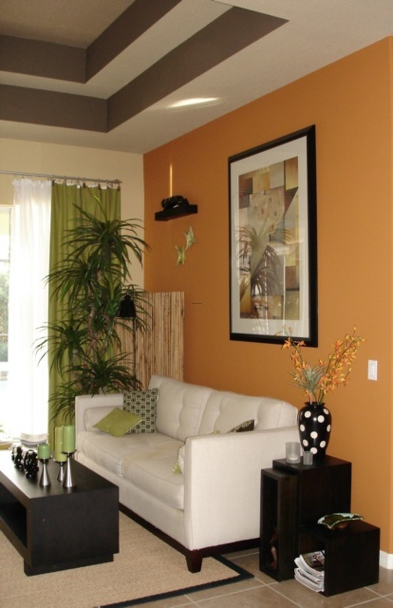 wall paint colors living room photo - 1