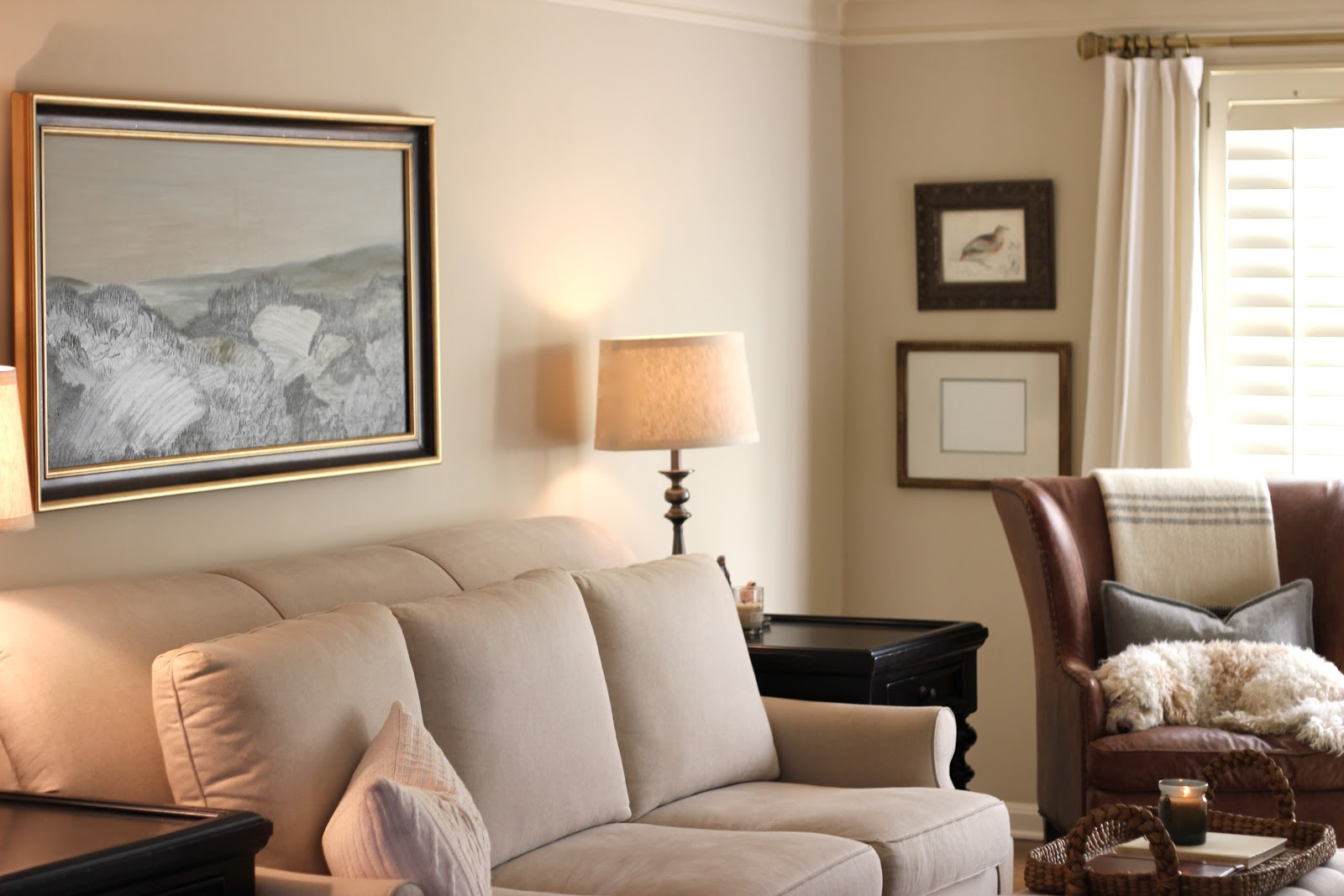 wall paint colors living room photo - 6